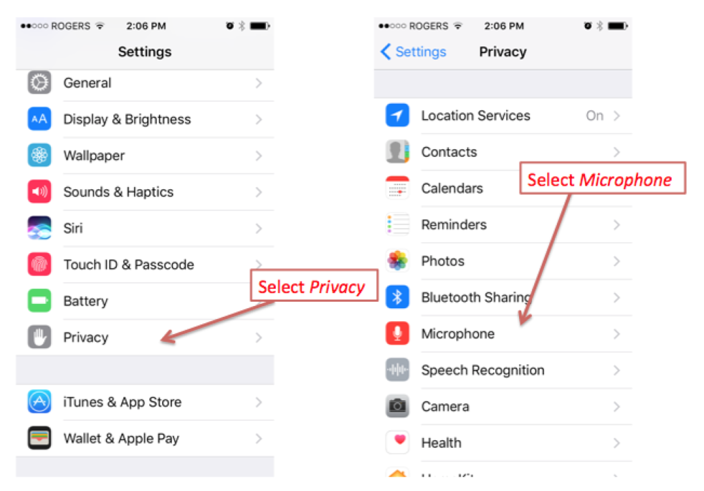 iPhone Privacy settings Microphone